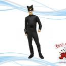chat noir (miracolous)